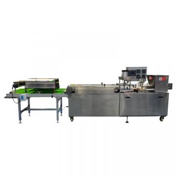 Industrial Twin Screw Extruded Bread Crumbs Snack Food Production Line Manufacturer